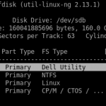 Partition Table on the New Disk